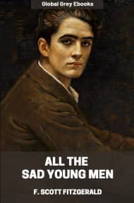 cover page for the Global Grey edition of All the Sad Young Men by F. Scott Fitzgerald