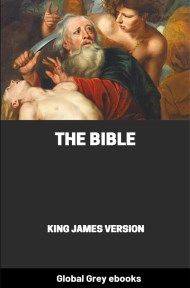 cover page for the Global Grey edition of The Bible: The King James Version