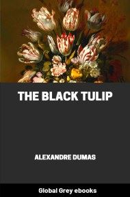 cover page for the Global Grey edition of The Black Tulip by Alexandre Dumas