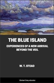 The Blue Island: Experiences of a New Arrival Beyond the Veil
