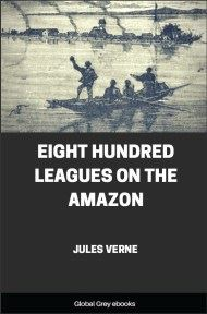 cover page for the Global Grey edition of Eight Hundred Leagues on the Amazon by Jules Verne