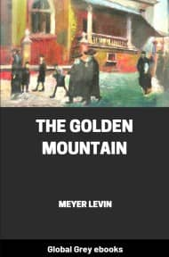 cover page for the Global Grey edition of The Golden Mountain by Meyer Levin