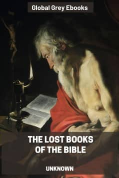 cover page for the Global Grey edition of The Lost Books of the Bible by Unknown