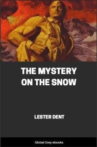The Mystery on the Snow