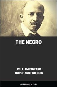 cover page for the Global Grey edition of The Negro by William Edward Burghardt Du Bois