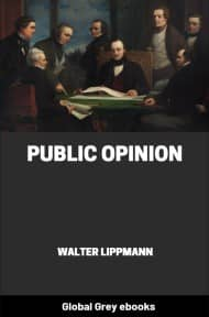 cover page for the Global Grey edition of Public Opinion by Walter Lippmann