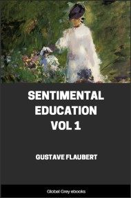 Sentimental Education Vol 1 By Gustave Flaubert