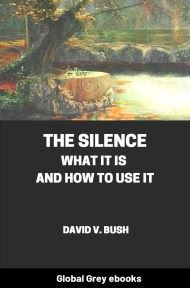 cover page for the Global Grey edition of The Silence: What It Is and How To Use It by David V. Bush