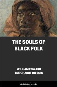 The Souls of Black Folk By William Edward Burghardt Du Bois