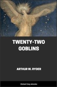 cover page for the Global Grey edition of Twenty-Two Goblins by Arthur W. Ryder
