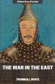 cover page for the Global Grey edition of The War in the East by Trumbull White