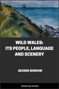 cover page for the Global Grey edition of Wild Wales: Its People, Language and Scenery by George Borrow