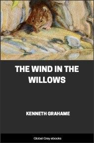 Wind In The Willows Ebook