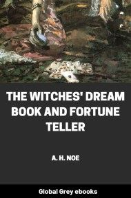 The Witches' Dream Book and Fortune Teller By A. H. Noe