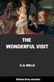 Cover for the Global Grey edition of The Wonderful Visit by H. G. Wells